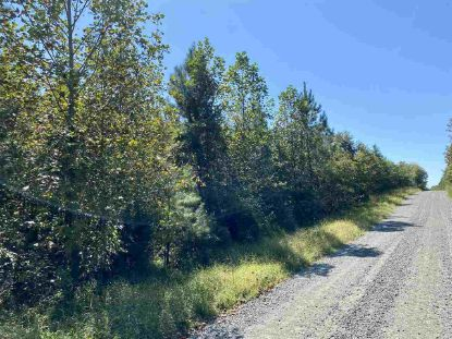 Lot 3 CARYS CREEK RD  Fork Union, VA MLS# 609216