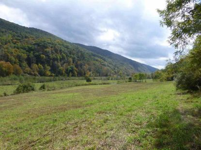 TBD UPPER BACK CREEK RD  Monterey, VA MLS# 609223