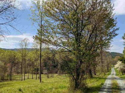 0 HARRIS MOUNTAIN LN  Boonesville, VA MLS# 609669
