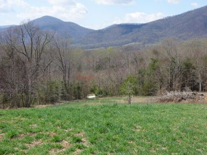 744 B LEVEL GREEN RD  Roseland, VA MLS# 610901