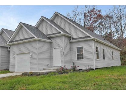 6275 TRUXTON CT  Mount Jackson, VA MLS# 610932