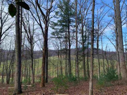 D-01 WINSOME ORCHARD LN  North Garden, VA MLS# 611258