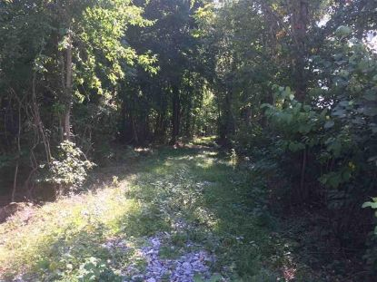 TBD OLD B AND O RD  Raphine, VA MLS# 611474