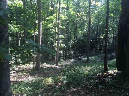 Lot 5 OLD B AND O RD  Raphine, VA MLS# 612695