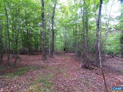 TBD-1 GILBERT STATION RD  Barboursville, VA MLS# 613584