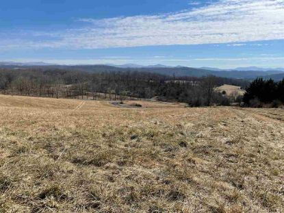 STEEPLECHASE DR  Lexington, VA MLS# 613934