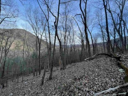Lot 73 LITTLE SPRING LN  Elkton, VA MLS# 614471