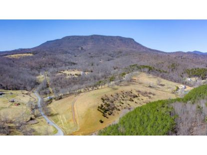 TBD JACKTOWN RD  Lexington, VA MLS# 615412