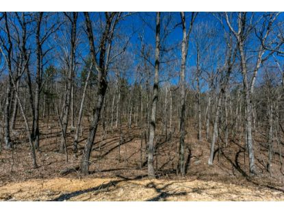 TBD 53 MIRACLE SPRINGS RD  Elkton, VA MLS# 616436