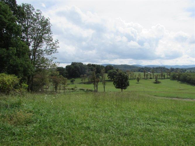Farmview Rd, Crockett, VA 24323