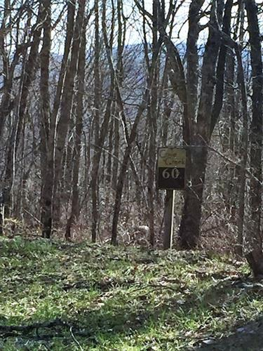 Lot 60B, Cove Creek, Bastian, VA 24134