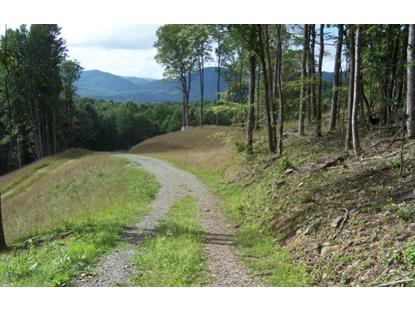 TBD Rock Fence Road  Elk Creek, VA MLS# 45998