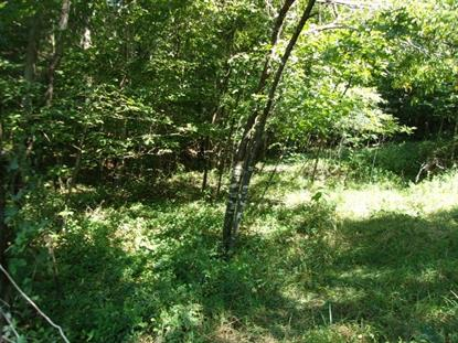 TBD Gem Stream  Elk Creek, VA MLS# 57232