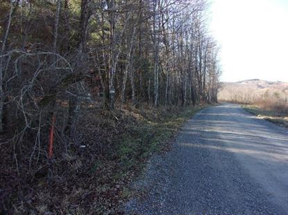TBD Wallens Creek Road  Troutdale, VA MLS# 58477
