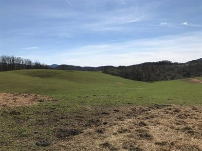 TBD Windsor Road  Rural Retreat, VA MLS# 59913