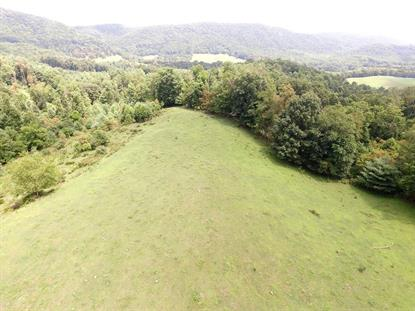 163 Jerusalem Rd.  Elk Creek, VA MLS# 63485