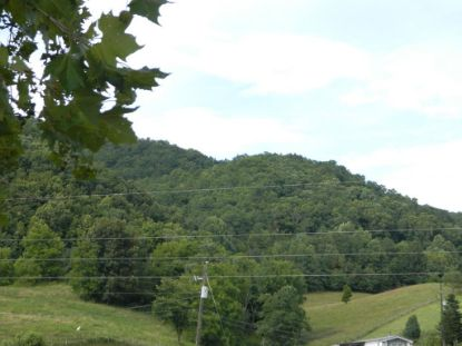 TBD Burnwood Ln.  Atkins, VA MLS# 66078