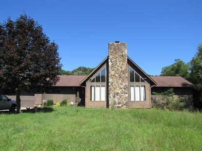 166 Mountain Road  Pounding Mill, VA MLS# 66336
