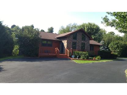 Pond Street Pounding Mill, VA MLS# 66456