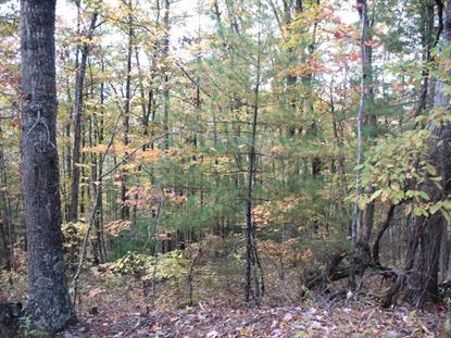 TBD Stoots Mountain Road  Austinville, VA MLS# 67212