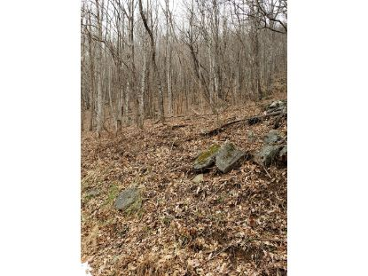 TBD Highlands Parkway  Mouth of Wilson, VA MLS# 67515