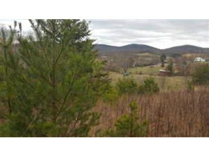 tbd Iron Belt Lane  Stuart, VA MLS# 67684