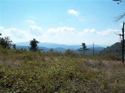 TBD Windy Ridge Trail  Troutdale, VA MLS# 67859