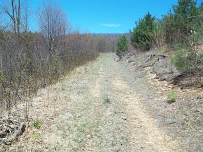 OFF Lost Lake Road  Troutdale, VA MLS# 67864