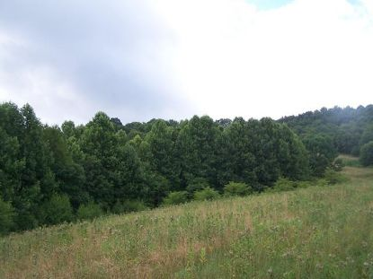 TBD Rocky Hollow Rd.  Troutdale, VA MLS# 68568