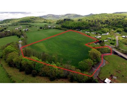 TBD Cedar Springs Road  Speedwell, VA MLS# 68899