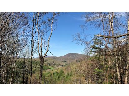 TBD East Mill Creek Rd.  Fleetwood, NC MLS# 69105