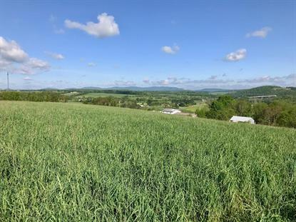 TBD Brown Town Road  Max Meadows, VA MLS# 69365