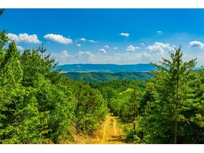 174 Acre Millers Creek Road  Max Meadows, VA MLS# 69769