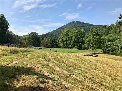 TBD Collins Cove Road  Ivanhoe, VA MLS# 70771