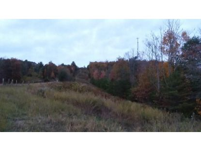 TBD Hall Hollow Rd.  Austinville, VA MLS# 71949