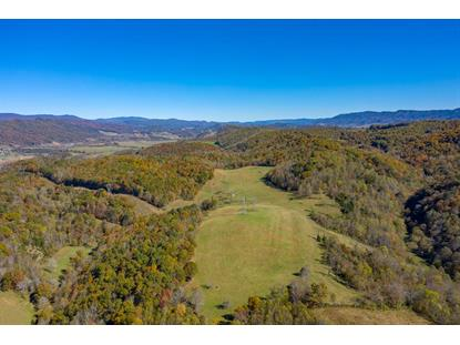 344 Acre Burgess Hollow Road  Saltville, VA MLS# 72000