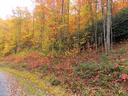 Lot 8A Cove Creek Road  Tazewell, VA MLS# 72182