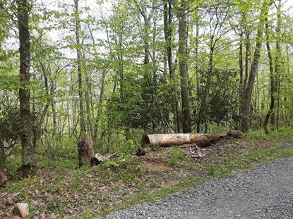 TBD Oneida Peak Rd  Bluefield, VA MLS# 72195