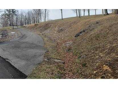 TBD Triangle Road  Bluefield, VA MLS# 73263