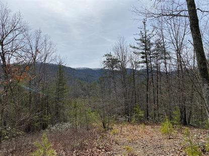 TBD LITTLE CREEK HIGHWAY  Dublin, VA MLS# 73377