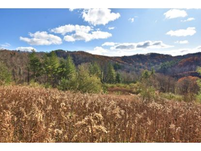 3100 Highlands Parkway  Mouth of Wilson, VA MLS# 73541