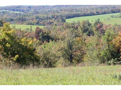 TBD Jeb Stuart Hwy  Meadows of Dan, VA MLS# 73567