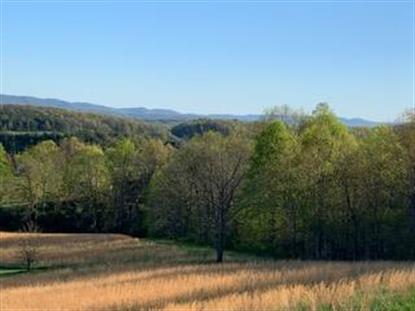 TBD Big Valley Dr.  Draper, VA MLS# 73757