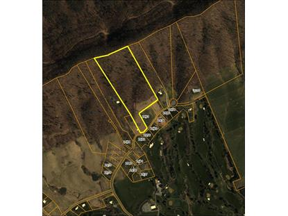 Lot 60 Big Valley Drive  Draper, VA MLS# 73759