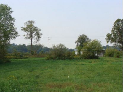 .38 ac Chiswell Road  Max Meadows, VA MLS# 73772