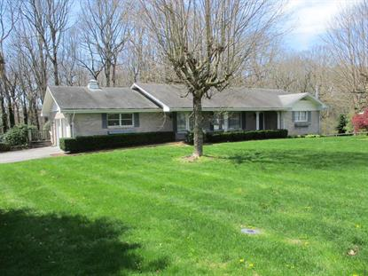 301 Mountain View Avenue  Rural Retreat, VA MLS# 73779