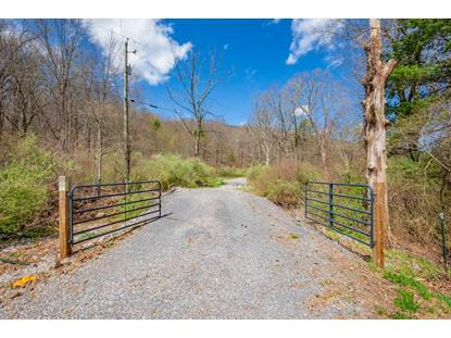 2589 Laurel Fork Rd.  Rocky Gap, VA MLS# 73801