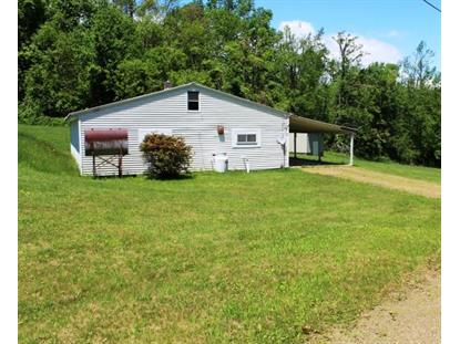 733 Red Rough Rd  Meadows of Dan, VA MLS# 73861