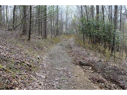 5254 Buffalo Mountain Road  Meadows of Dan, VA MLS# 73935