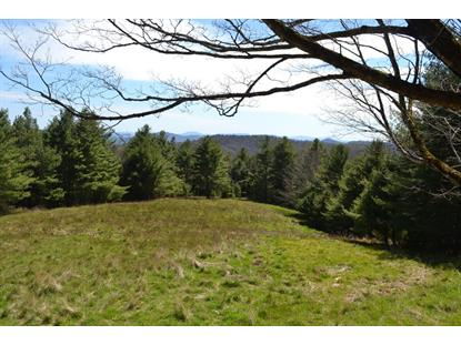TBD Panther Creek Rd.  Troutdale, VA MLS# 74000